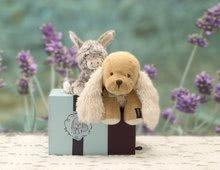 Plyšové zvieratká - Plyšový somárik Régliss Les Amis-Anon Kaloo 12 cm v darčekovom balení pre najmenších_5