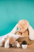 Plyšové zvieratká - Plyšový psík Les Amis-Caramel Chien Kaloo spievajúci 25 cm v darčekovom balení pre najmenších_4