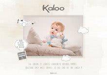 Kaloo nopnop m K961423