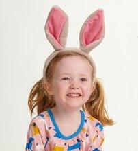 Sp1003 b thread bear bunny ears
