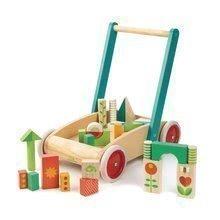 TL8464 a tender leaf baby block walker