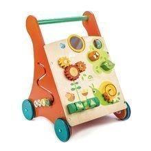 TL8465 a tender leaf baby activity walker
