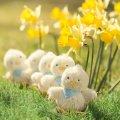 Kaloo bábka plyšové kuriatko Les Amis-Poussin Doudou 963145 žlté