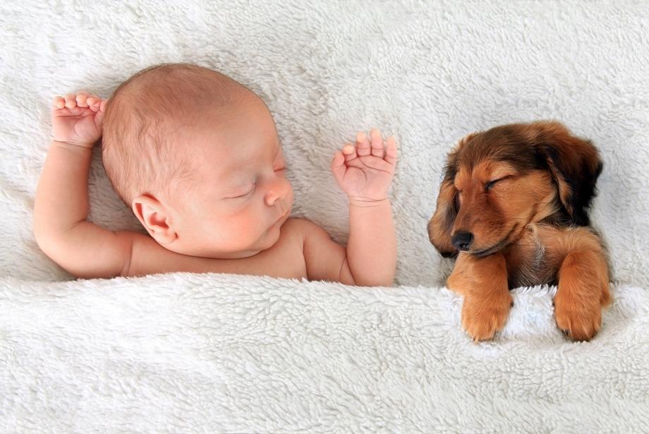 Tipy na spánok ako v bavlnke