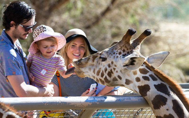 Rodinný výlet v zoo