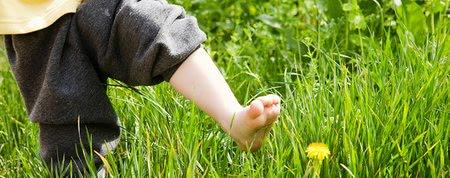 Leto v prírode: Ako deti ochrániť pred kliešťom?